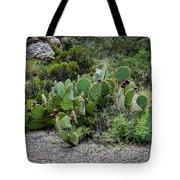 Sonoran Cactus Tote Bag
