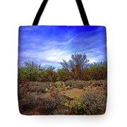 Sonoran Desert H1819 Tote Bag