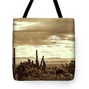 Sonoran Desert Mountains And Cactus Near Phoenix Tote Bag