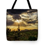 Sonoran Splendor  Tote Bag