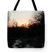 Sonoran Sundown Tote Bag