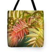 Sorbaria Sorbifolia Spring Foliage Tote Bag