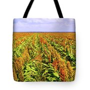 Sorghum Plants Fields In Botswana Tote Bag