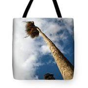 Sorrento Date Palms Tote Bag