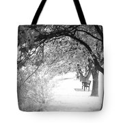 Soul Crossing Tote Bag