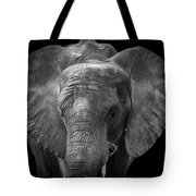 Soul Of The Planet, No. 11 Tote Bag
