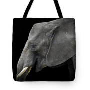 Soul Of The Planet, No. 3 Tote Bag