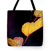 Souls Approach Tote Bag