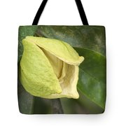 Soursop Fruit Blossom Tote Bag