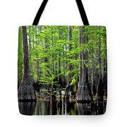 South Carolina Low Country Tote Bag
