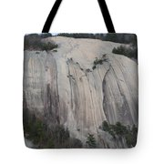 South Face - Stone Mountain Tote Bag