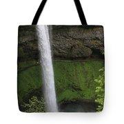 South Falls Tote Bag