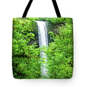 South Falls Tote Bag