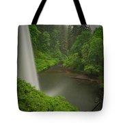 South Falls Vista Tote Bag