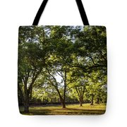 South Georgia Tote Bag