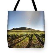 South Napa Valley Morning Tote Bag