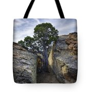 South Of Pryors 2 Tote Bag by Roger Snyder