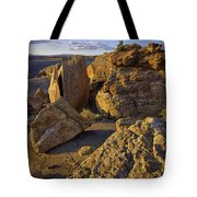 South Of Pryors 32 Tote Bag