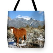 South West Ginger Tote Bag