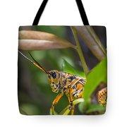 Southeastern Lubber Grasshopper Tote Bag
