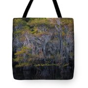 Southern Colors Tote Bag