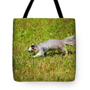 Southern Fox Squirrel Tote Bag