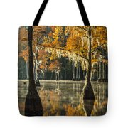 Southern Gold Tote Bag