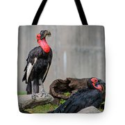 Southern Ground Hornbills Tote Bag