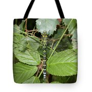 Southern Hawker Tote Bag
