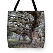 Southern Live Oak Tote Bag