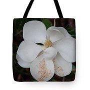 Southern Magnolia Matchsticks Tote Bag