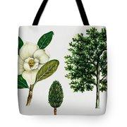 Southern Magnolia Or Bull Bay  Tote Bag