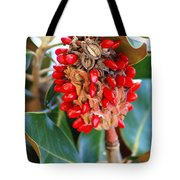 Southern Magnolia Seedpods Tote Bag