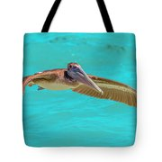 Southern Most Pelican Tote Bag