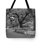 Southern Oaks In Black And White Tote Bag