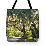 Southern Pathway Tote Bag