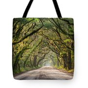 Southern Tree-lined Dirt Road Of Dreams Tote Bag