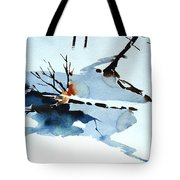 Southern Vermont Roadside Runoff Tote Bag