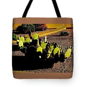 Southwest, Saturated Tote Bag