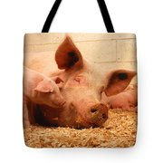 Sow And Piglets Tote Bag