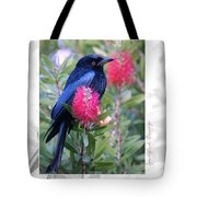 Spangled Drongo Tote Bag