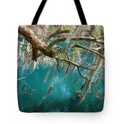 Spanish Moss And Emerald Green Water Tote Bag
