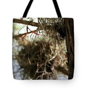 Spanish Moss I Tote Bag