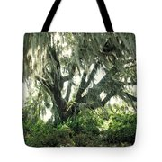 Spanish Moss In Motion Tote Bag