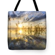 Sparkley Waters Tote Bag