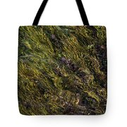 Sparkling Clear Waters Tote Bag