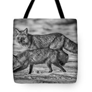 Sparkling Eyes Bw Tote Bag