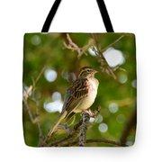 Sparrow-1 Tote Bag