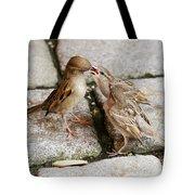 Sparrow Feeding Fledgelings Tote Bag