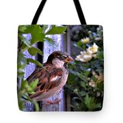 Sparrow In The Shrubs Tote Bag